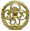 DOSB_gold_jugend